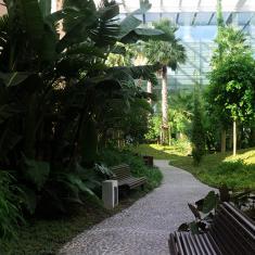 Jardim Tropical Interior